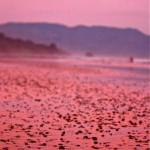 Playa Hermosa Nicoya